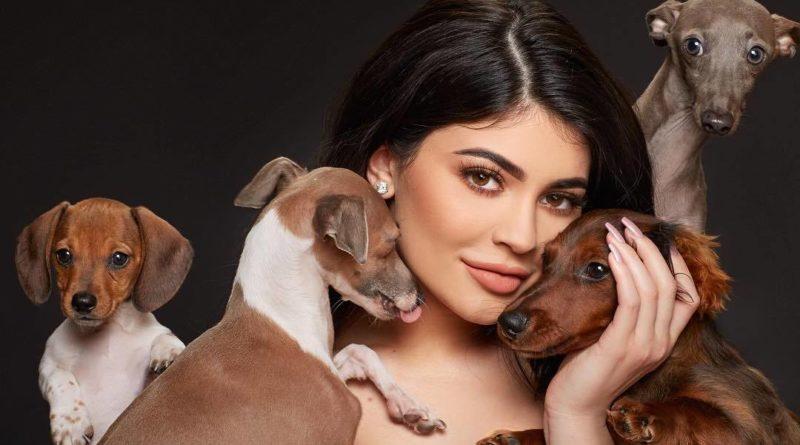 Kylie Jenner's pets