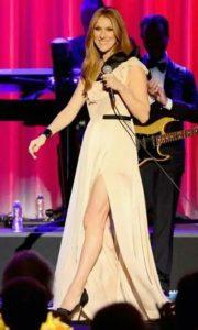 Celine 2014