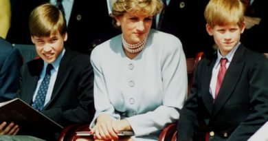 princess diana william and harry