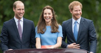 Harry hopes Kate is pregnant with twins