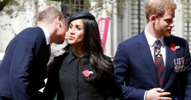 meghan markle prince harry and prince william