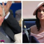 For This Shocking Reason Meghan Brings Out Prince Charles Playful Side