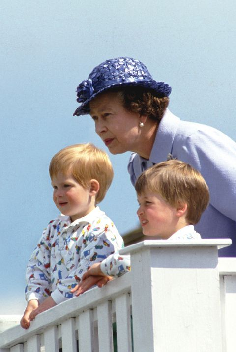 prince harry, prince william and queen elizabeth