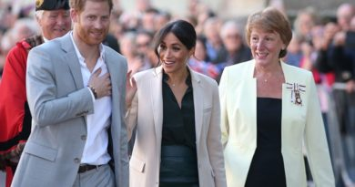 harry meghan visit sussex
