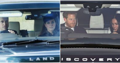 Why William And Harry Always Drive The Cars When Going To Party