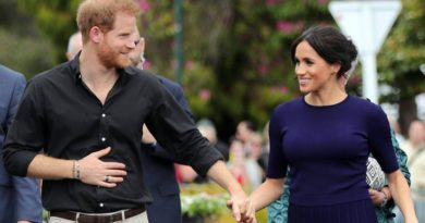 Why Harry And Meghan Announced Their Pregnancy With First Child On Royal Tour