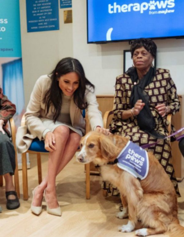 Meghan markle and dog