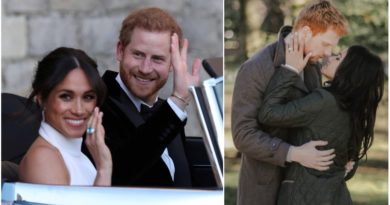 Harry and Meghan movie sequel