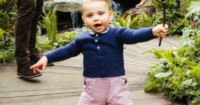 Prince Louis Set To Attend His First Royal Engagement