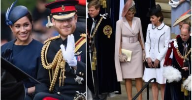 Why Didn't Harry And Meghan Attend Garter Day Celebration
