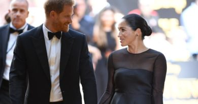 Harry And Meghan Make Their Red Carpet Debut At The Lion King Premier
