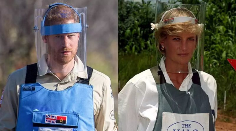 Prince Harry Follows In Mom Diana's Footsteps at Angolan Landmine