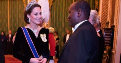 Kate Debuted A New Diamond Ring At Buckingham Palace Reception