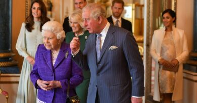 Harry, Charles And William Will Join The Queen To Talk Things Through