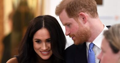 Harry And Meghan Reveal Details About Canada Vacation With Archie