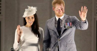 Prince Harry And Meghan Revealed Final UK Engagements As Royals