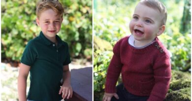 Prince George and Prince Louis
