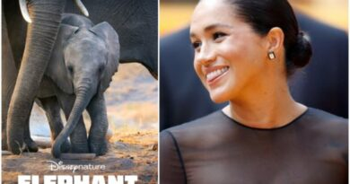 meghan markle narrated Disneynature's Elephant 1