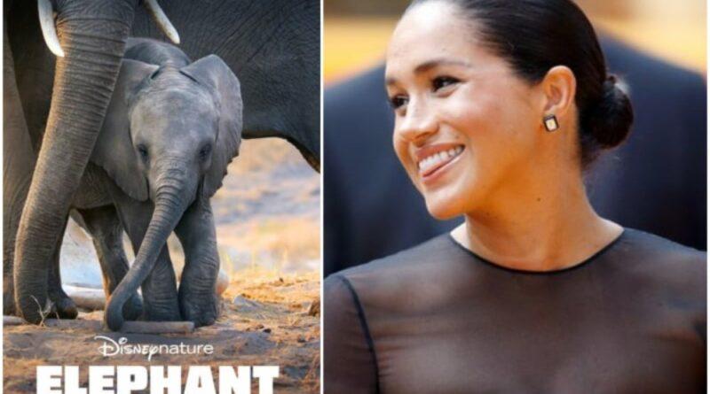 meghan markle narrated Disneynature's Elephant 1