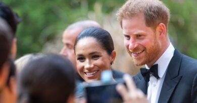 Harry And Meghan Donated Funds From Wedding Broadcast Amid Coronavirus Crisis