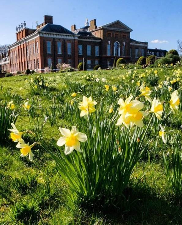 Prince William Kate Easter photo yellow flowers Kensington Palace