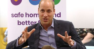 Prince William Announces New Patronage And Pays Tribute To The Brits