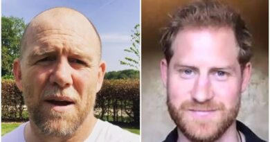 MIKE TINDALL TALKED ABOUT HOW PRINCE HARRY WAS GOING TO BE A GREAT DAD A YEAR AGO