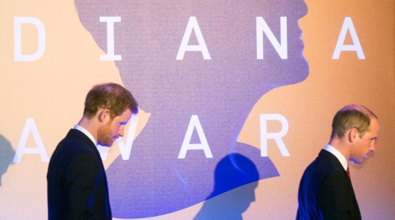 Prince William And Prince Harry Reunite In Honour Of Princess Diana