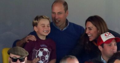 Prince William and Prince George Aston Villa football match