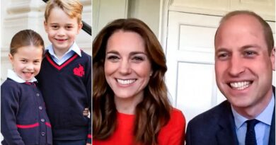 William And Kate Reveal How George And Charlotte Marked VE Day During Video Call With Second World War Veterans