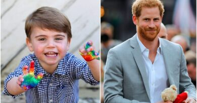 Prince Harry Bought The Perfect Gift For Prince Louis