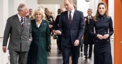 How Charles And Camilla Follow In William And Kate Footsteps With Social Media Account