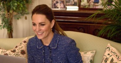 Duchess Kate In New Video Call