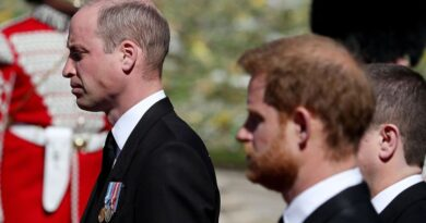 Prince Harry Two-Hour Meeting With Princes Charles And William Revealed