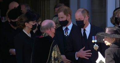 Prince Harry reunited with Kate and Prince William 2