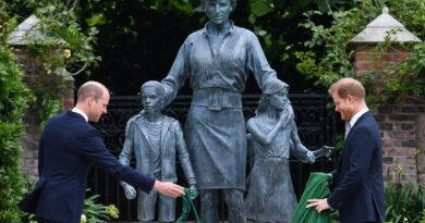 Prince Harry and Prince William have come together for the first time in month to honor their late mother, Princess Diana. statue