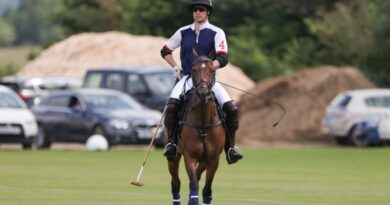 Prince William Returns To Polo Field For Important Reason