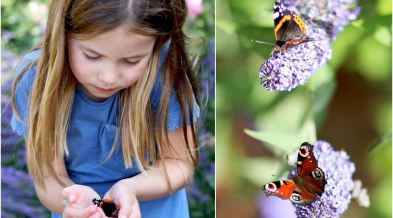 Princess Charlotte Cradles Butterfly In New Unseen Photo
