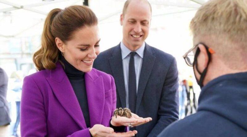 Fearless Duchess Kate Meets Charlotte The Tarantula